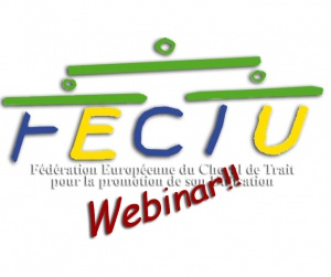 FECTU Webinar - An overview of the welfare of working equids in Latin America