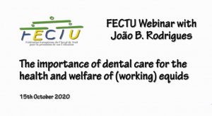 FECTU Webinar with Joao B. Rodrigues: The importance of dental care for the health and welfare of (working) equids.